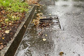 """10.11.2021 - Seminar """"Regenwasser"""""""